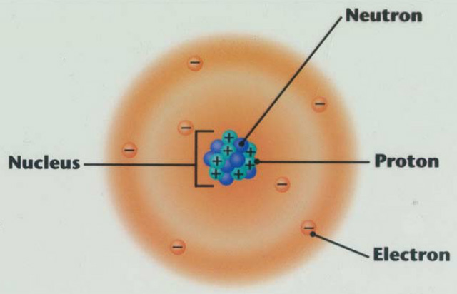 thenucleus - nuclear chemistry, Human body